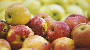 Очередное подорожание: яблоки, абрикосы, черешня и ягоды станут роскошью