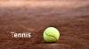 Джокович и Маррей поспорят за путевку в финал Открытого чемпионата Франции по теннису