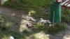 Двор жилого дома на Ботанике превращается в свалку (ФОТО)