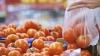 В Кишинёве откроются ярмарки свежих фруктов, овощей и мёда