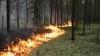 На Аляске из-за лесного пожара эвакуировали жителей 1700 домов