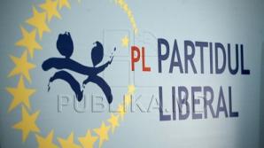 ЛП решила, с кем создаст альянс на местном уровне