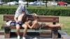 Европа изнывает от сорокаградусной жары