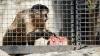 Животных кишиневского зоопарка спасают от жары мороженым (ФОТОРЕПОРТАЖ)