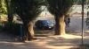 Очевидец возмутился парковкой машины съемочной группы Jurnal TV