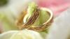 Секретами счастливого брака поделились пары, отпраздновавшие бриллиантовые и золотые свадьбы