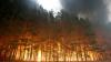 Сотни людей эвакуированы из американского города Рузвельт из-за лесного пожара