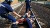 Германия возобновила железнодорожное сообщение с Австрией
