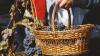 Федерация по продвижению туризма предлагает провести День вина на части прежней территории