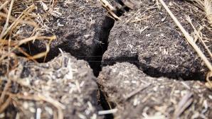 Молдавские синоптики объявили минувшее лето самым засушливым за последние 30 лет