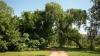 Национальный день озеленения отметили в Молдове
