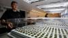 В США откроют первый марихуановый курорт