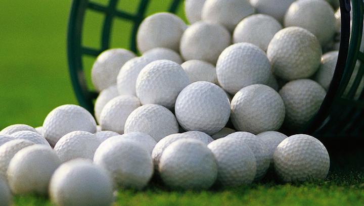 Американец стал миллионером, доставая из водоемов мячи для гольфа