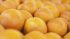 """Новый столичный """"деликатес"""": апельсины с плесенью (ВИДЕО)"""