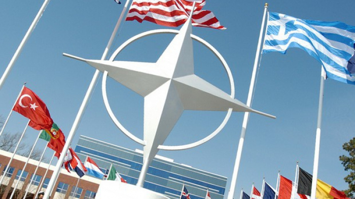 НАТО проведет экстренное заседание в связи с крушением Су-24