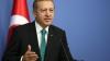 Эрдоган пообещал найти альтернативу российскому газу