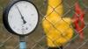 """Тимофти промульгировал Закон о природном газе, отменяющий """"поправку Фурдуя"""""""