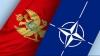НАТО пригласил Черногорию вступить в альянс