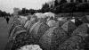 Мэрия просит лидеров DA освободить площадь от палаток