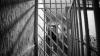 Столичного полицейского приговорили к тюремному сроку за коррупцию