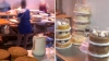 Неприятного аппетита: в столичной кондитерской обнаружены серьезные нарушения
