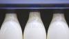 На государственной молочной фабрике обнаружили серьезные нарушения (ФОТО/ВИДЕО)