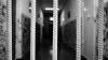 Мужа и сына погибшей Светланы Баштовой выпустят из тюрьмы на три дня