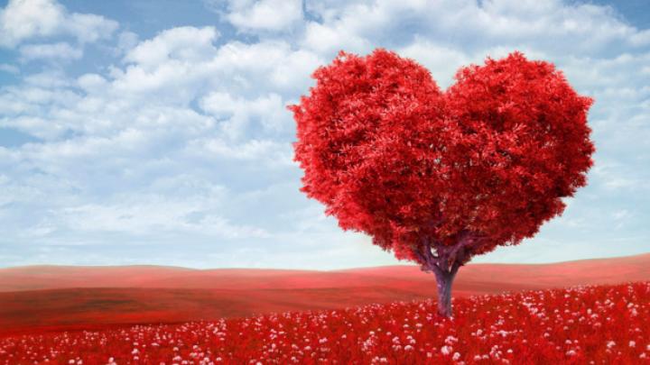 Туристические агентства подготовили специальные предложения ко Дню святого Валентина