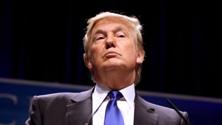Юмористический гей-роман о Дональде Трампе стал хитом