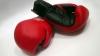 Завтра в Атлантик-Сити пройдет самый ожидаемый бой весны в женском боксе