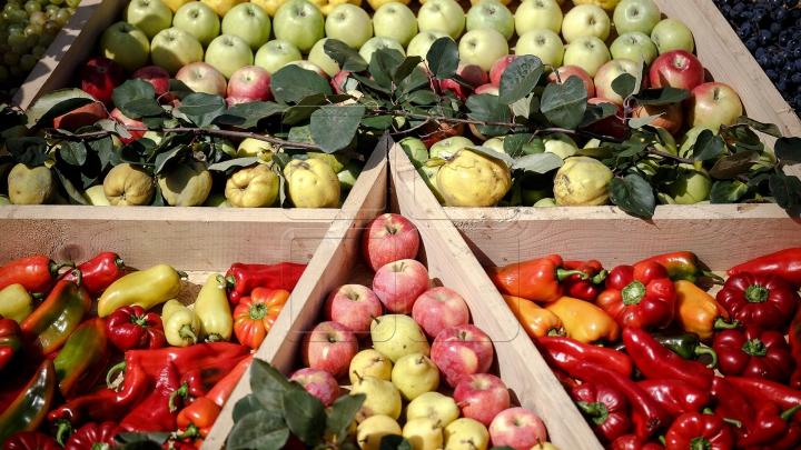 Овощи со свинцом: на заседании правительства огласили итоги рейдов на плантациях по берегам реки Бык