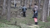 В Молдове приостановили все виды вырубки леса в период действия ЧП
