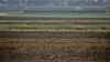 Фермеры получили возможность самостоятельно импортировать дизельное топливо