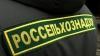 Россельхознадзор ввел ограничения на ввоз молдавской продукции через Белоруссию