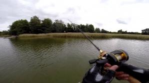 В Дубоссарах семеро мужчин незаконно ловили рыбу