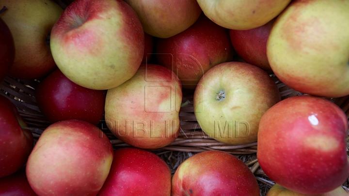 Россельхознадзор уничтожил 20 тонн яблок с молдавскими документами