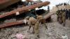 В Кении при обрушении здания погибли семь человек