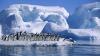 Два огромных куска шельфа откололись от Антарктиды