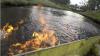 В Австралии депутат от партии зеленых поджег воду в реке (ВИДЕО)