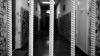 Оглашен приговор для напавших на инкассаторскую машину у METRO