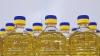 Возрос экспорт молдавской продукции в арабские страны