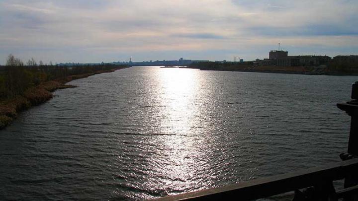 Выпившая женщина ради 50 кружек пива переплыла реку Урал