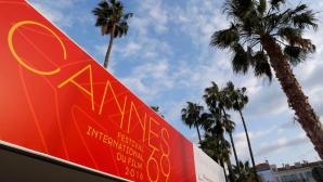 Главные наряды открытия 69-го Каннского кинофестиваля (ФОТО)