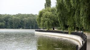 Вандалы утопили скамейку в озере парка Валя-Морилор