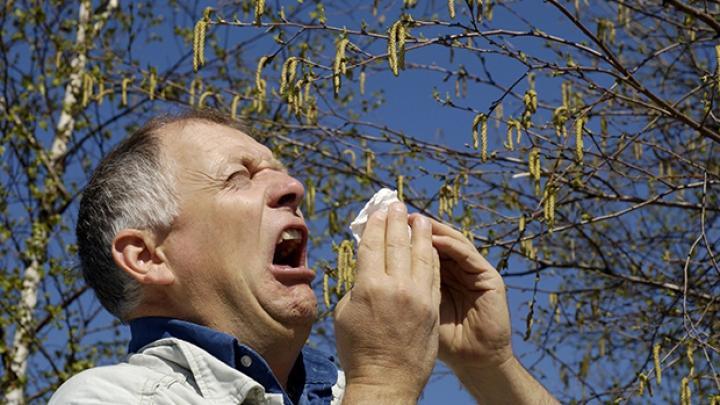 Испытание весной: аллергики тяжко переносят период цветения растений
