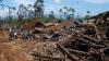 50 человек стали жертвами оползня в Индонезии