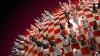 В Кишиневе прошли соревнования по шахматам, шашкам и настольному теннису для пенсионеров