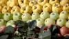 Россия отменила эмбарго на мясо и овощи для детского питания