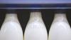 Россельхознадзор рассказал о гипсе, извести и меле в молоке