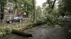 Стихия не прошла бесследно: из-за сильного дождя с ветром остался без электроэнергии 31 населённый пункт